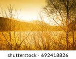 tree and twig at the sunset | Shutterstock . vector #692418826