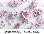 lilac blossoms on a marble... | Shutterstock . vector #692535532
