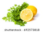 lemon and parsley leaves... | Shutterstock . vector #692573818