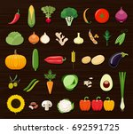set of different kinds of... | Shutterstock .eps vector #692591725