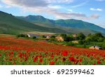 Poppy Field  Mountains  Houses...