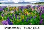 landscape at lake tekapo and... | Shutterstock . vector #692641216