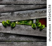 creepy horror monster zombie...   Shutterstock . vector #692642158