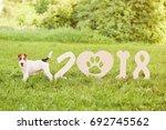 shot of a cute wire fox terrier ... | Shutterstock . vector #692745562
