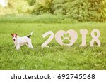 funny wire fox terrier puppy... | Shutterstock . vector #692745568