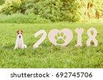 adorable wire fox terrier dog... | Shutterstock . vector #692745706