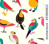 stylized exotic birds seamless... | Shutterstock .eps vector #692800822