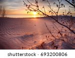 Small photo of Spiritual and afterlife peace and quiet with sun flare over rippling sand dunes with tree branch silhouette in foreground. Lonely wanderlust travel and copyspace for text in the bottom left.
