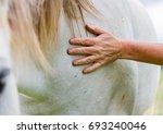 older woman caressing a grey... | Shutterstock . vector #693240046