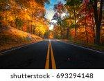 Empty Road Leading Through Fal...