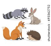 forest animals set. raccoon ... | Shutterstock .eps vector #693362752
