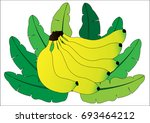 bunch of bananas with leaf | Shutterstock .eps vector #693464212