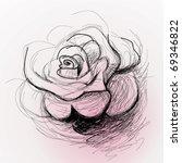 rose flower   realistic sketch  ... | Shutterstock .eps vector #69346822