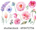 Stock photo hand painted floral elements set watercolor botanical illustration of tulip peony rose marigold 693472756