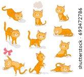 red tabby little cat in... | Shutterstock . vector #693472786
