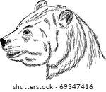 vector   hand draw portrait... | Shutterstock .eps vector #69347416