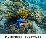 tropical seashore underwater... | Shutterstock . vector #693504355