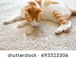 cute cat lying on carpet near... | Shutterstock . vector #693523306