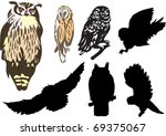 Seven Owls Isolated On White...