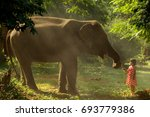 the girl gives grass to... | Shutterstock . vector #693779386