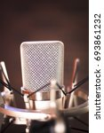 Small photo of Studio vocal large diaphragm condenser voiceover recording microphone with built in antipop screen.