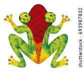 frog | Shutterstock .eps vector #693987832