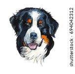 Bernese Mountain Dog. Portrait...