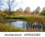 autumn swamp. swamp landscape ...   Shutterstock . vector #694062082