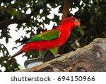red parrot    Shutterstock . vector #694150966