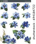 Spring Blue Flowers Of Hepatic...