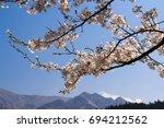 sakura in japan | Shutterstock . vector #694212562