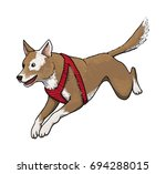 jumping dog  isolated on white  ... | Shutterstock .eps vector #694288015