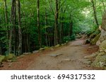 Path In The Montseny Natural...
