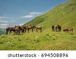 herd of horses standing on... | Shutterstock . vector #694508896