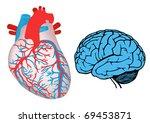 human heart and brain. jpg   Shutterstock . vector #69453871