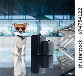 holiday vacation jack russell... | Shutterstock . vector #694754122