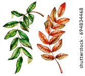 watercolor autumn leaves  hand... | Shutterstock . vector #694834468