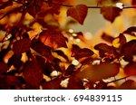 leaves | Shutterstock . vector #694839115