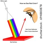 how we see red color... | Shutterstock .eps vector #694883878