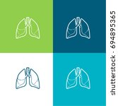 lungs green and blue material...