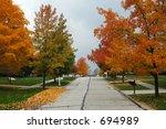tree lined street on clear fall ...   Shutterstock . vector #694989