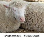 omsk  russia   july 23  2017 ... | Shutterstock . vector #695089006
