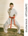little boy doing karate poses... | Shutterstock . vector #695168692