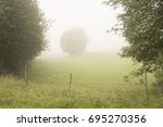 foggy morning | Shutterstock . vector #695270356