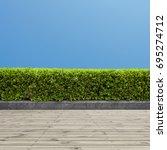 green bush or  and wooden floor ...   Shutterstock . vector #695274712