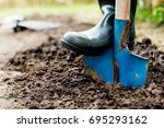 Worker Digs The Black Soil Wit...