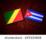 republic of the congo flag with ... | Shutterstock . vector #695334808