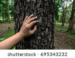 learning with trees | Shutterstock . vector #695343232