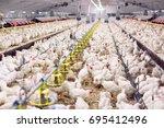 indoors chicken farm  chicken... | Shutterstock . vector #695412496