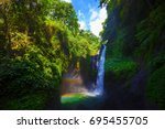jungle near aling aling... | Shutterstock . vector #695455705